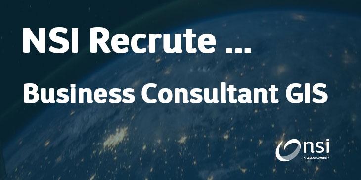 NSI recrute : Business Consultant GIS (H/F)