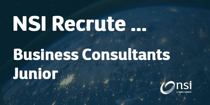 NSI recrute : Business Consultants Junior