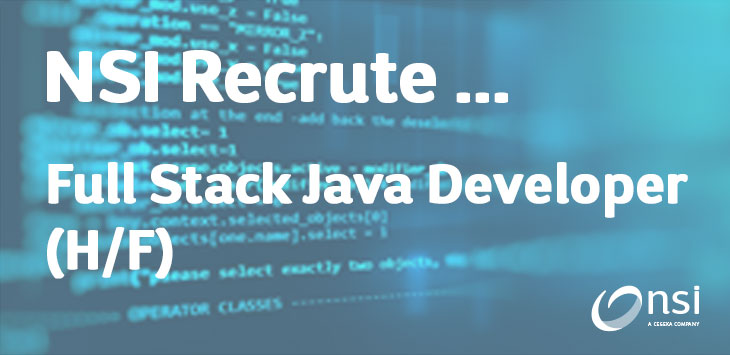 NSI recrute : Full Stack Java Developer (h/f)