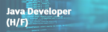 NSI recrute : Java Developer (h/f)