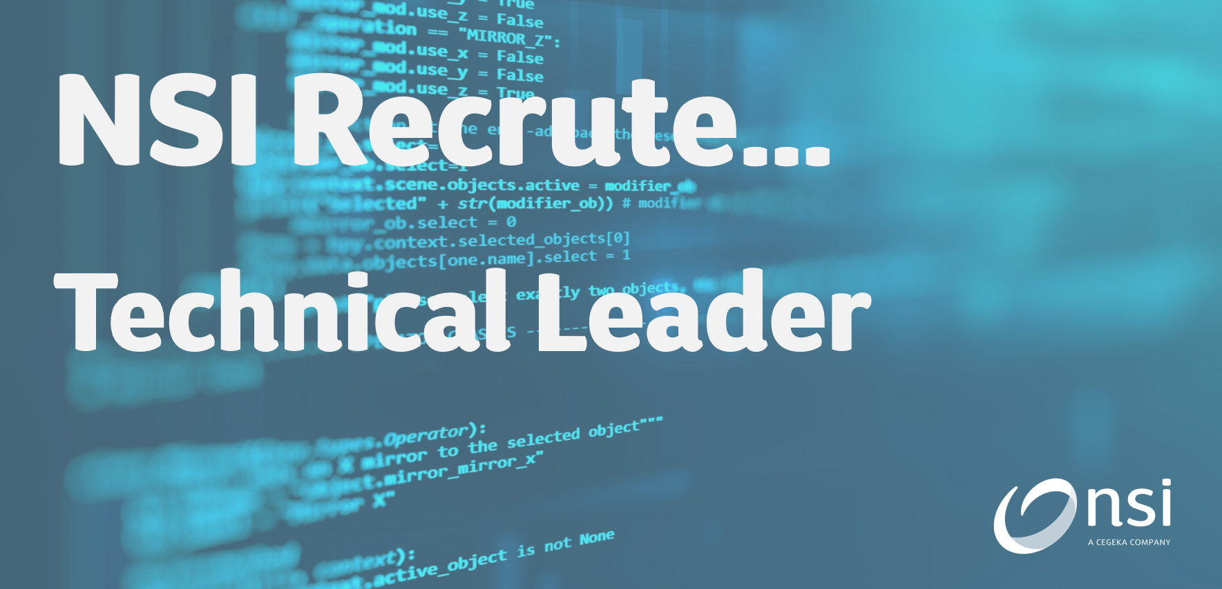 NSI recrute : Technical Leader FR/EN