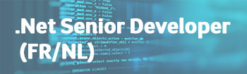 NSI recrute : .Net Senior Developer