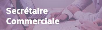 NSI recrute : Secrétaire Commercial(e) (H/F)