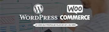 Un centre d'expertises spécialisé Wordpress/Woocommerce chez NSI !